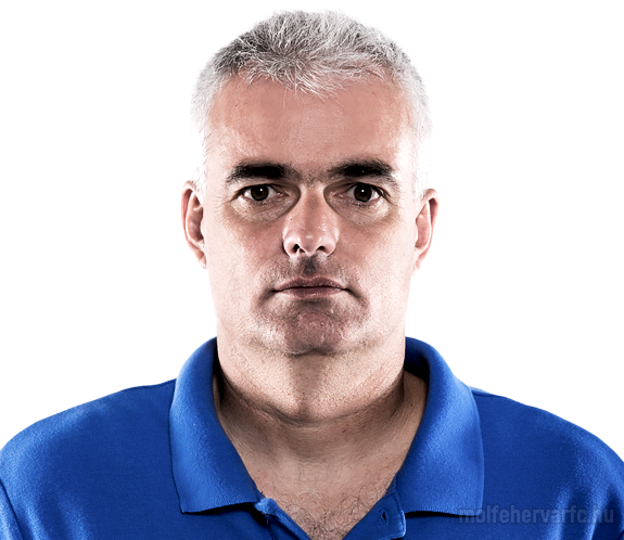 http://www.vidi.hu//_files/team_players//portrait/staff_1729_1086.png